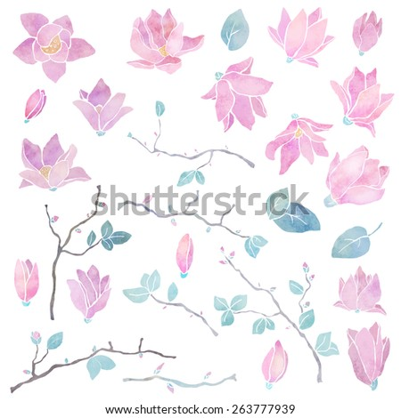 Hand painted floral watercolor set, magnolia flowers, branches and leaves isolated on a white background. Art icon design, logo elements - stock vector