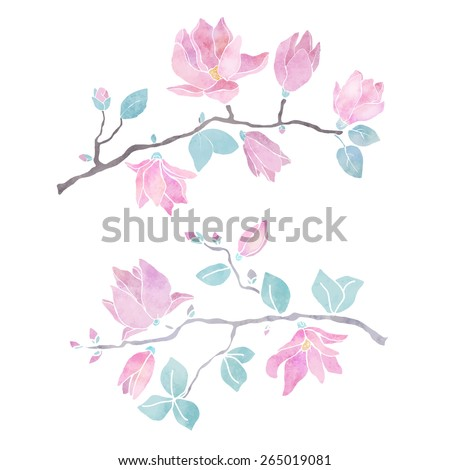 Hand painted floral watercolor set, magnolia trees ,flowers, leaves isolated on a white background. Natural design elements - stock vector