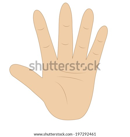 hand, showing number five on white background, vector illustration