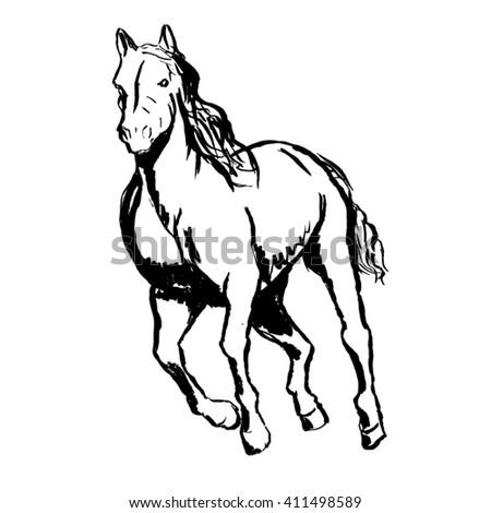 Hand sketch horse - stock vector