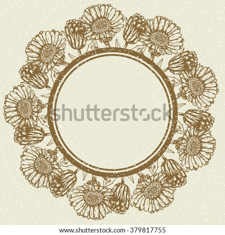 Hand sketched herbs vector. Vintage frame with inky calendula flower vector. Retro design template with medicinal plants for labels, prints, stickers, posters, etc.  - stock vector