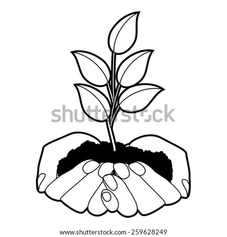 Hands holding seedling design. EPS 10 vector royalty free stock illustration for ad, promotion, poster, flier, blog, article, ad, marketing, conservation, gardening, brochure - stock vector