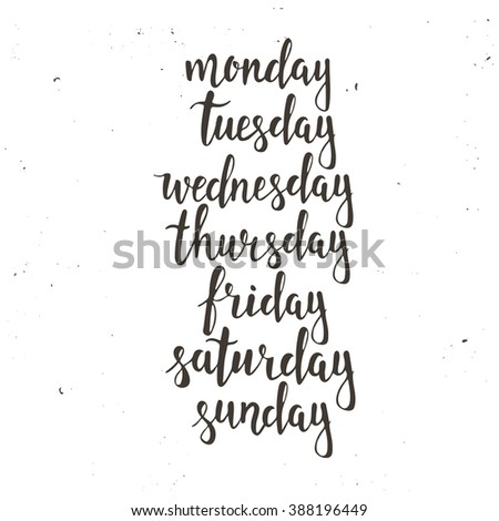 Handwritten days of the week: Monday, Tuesday, Wednesday, Thursday, Friday, Saturday, Sunday. Black ink calligraphy words isolated on white background. Calligraphy. - stock vector
