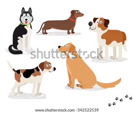 Happy dog vector characters on white background. Dogs standing and sitting, holding newspaper.  - stock vector