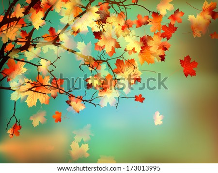 Happy Thanksgiving card, beautiful maple leaves. And also includes EPS 10 vector - stock vector