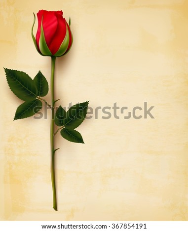 Happy Valentine's Day background. Single red rose on an old paper background. Vector. - stock vector