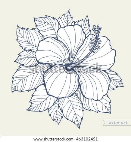 Hawaii Hibiscus Flower And Leaves Aloha Vector Floral Artwork Coloring Book Page For