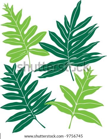 Hawaiian Ferns - stock vector