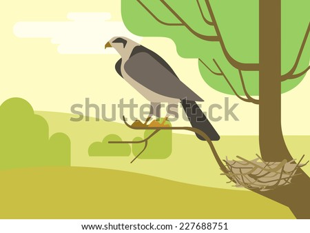 Hawk or eagle on nest located on tree branch. Flat design cartoon vector wild animals and birds. Flat nature zoo children collection. - stock vector