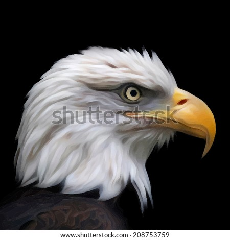 Head of a bald eagle, haliaeetus leucocephalus, isolated on black background. Side face portrait of American eagle. Amazing vector image in oil painting style. Great for user pic, icon, label, tattoo. - stock vector