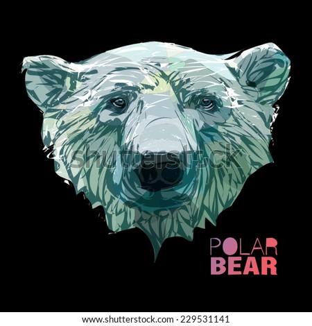 Head of a polar bear. Sketch drawn hands style - stock vector