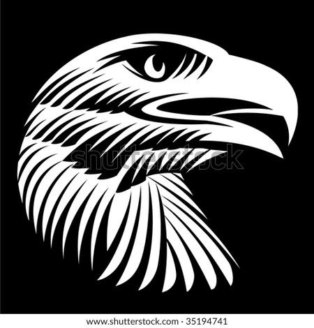 Head of a white-headed sea eagle - stock vector
