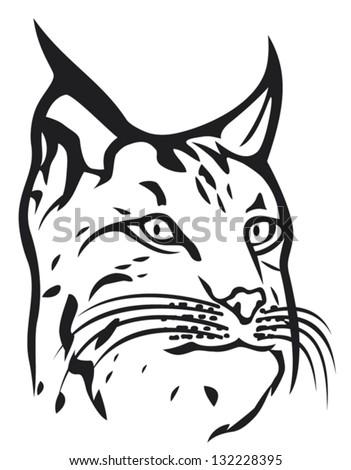head of lynx (bobcat head) - stock vector