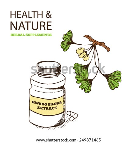 Health and Nature Supplements Collection. Ginkgo biloba  - stock vector
