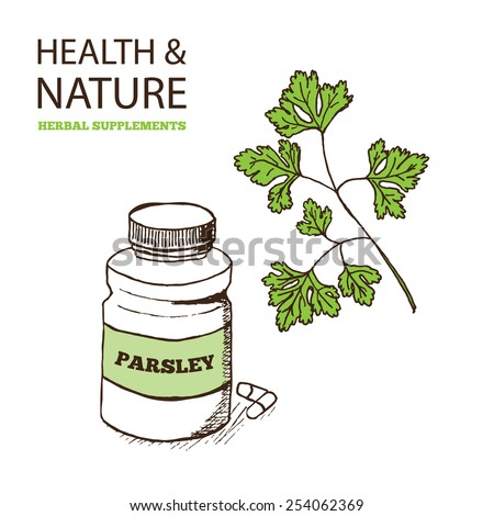 Health and Nature Supplements Collection.  Parsley - Petroselinum crispum - stock vector