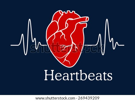 Health care concept depicting human heart with white wavy line of heartbeats cardiogram on dark blue background with caption Heartbeats - stock vector