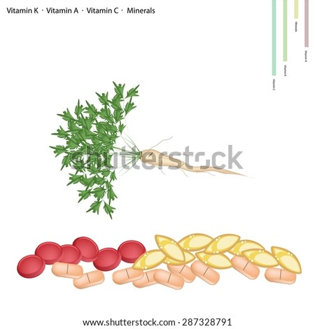 Healthcare Concept, Illustration of Parsley or Parsnip with Root with Vitamin C, Vitamin A, Vitamin C and Minerals Tablet, Essential Nutrient for Life.  - stock vector