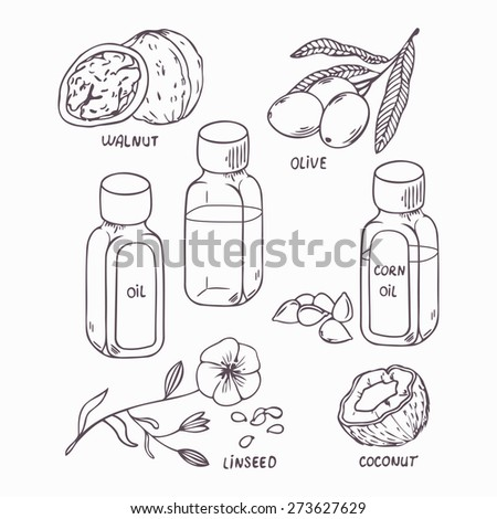 Healthy oil set in outline style. Coconut, walnut, olive, corn and linseed oil vector illustration - stock vector