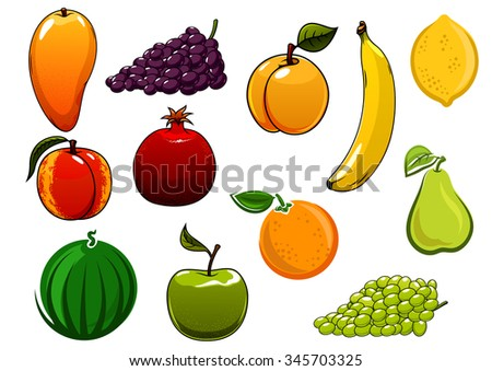Healthy ripe apple orange banana grapes mango peach watermelon, apricot, pear, pomegranate, and lemon fruits. Isolated on white, for agriculture harvest or food design - stock vector
