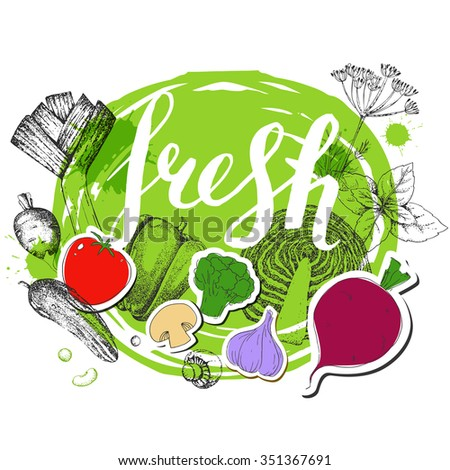 Healthy vegetarian food. Hand drawn Lettering. Inscription. Vegetables. Vector background. Tomato, pepper, mushrooms, radish, cabbage, broccoli, herbs, beet, cucumber, garlic. Stickers. Calligraphy. - stock vector