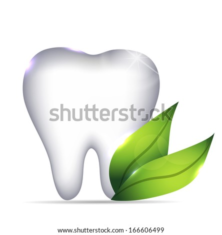 Healthy white tooth illustration and green leafs, dental symbol - stock vector