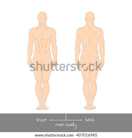 Healthy young man from front and back view. Male muscular body shapes colored outline vector illustration with the inscription: front and back. Vector illustration of a human figure - stock vector