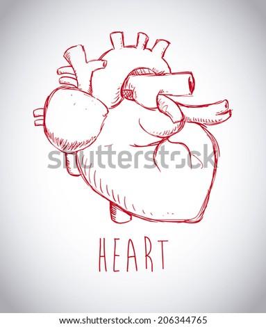 Heart design over gray background, vector illustration - stock vector