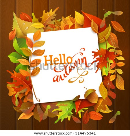 Hello Autumn Background. Bright autumn birch, elm, oak, rowan, maple, chestnut, aspen leaves and acorns on wood background. White square sheet of paper on them. You can place your text in the center. - stock vector