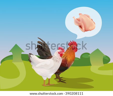 Hen and Rooster Walking  On the Farm. Vector Illustration - stock vector