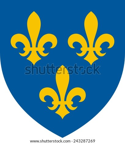 Heraldic lilies of France on a shield - stock vector