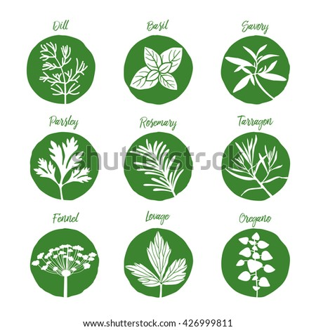 Herbs and spices set / herbs and spices art / herbs and spices EPS /  herbs and spices illustration /  herbs and spices icon set 3 / Fresh herbs and spices icon set