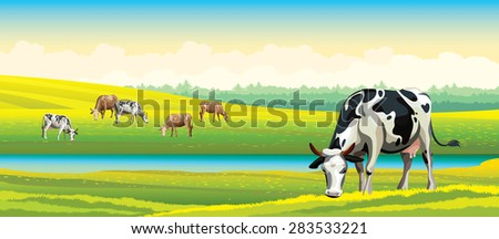 Herd of cows in green field on a cloudy sky. Vector rural landscape. - stock vector