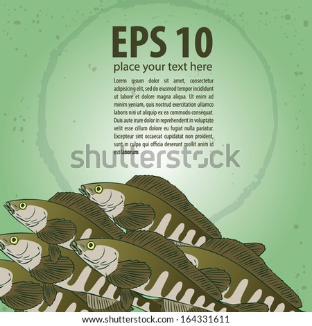 Hexagrammidae. rasp. Vector background. - stock vector