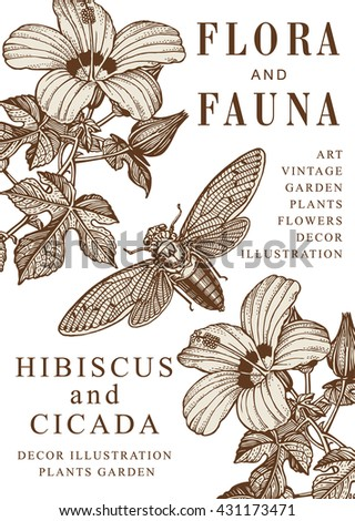 Hibiscus, Cicada, mallow. Beautiful garden baroque blooming realistic flowers. Frame, greeting invitation card, label. Drawing engraving isolated. Flora, fauna. Vintage vector victorian illustration.