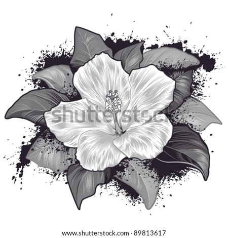 Hibiscus-Flower, Design Element - stock vector