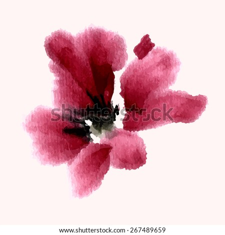 Hibiscus flower. Ink painting, watercolor. - stock vector