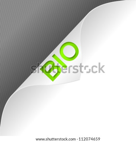 High quality curled paper corner with 3d word. Vector illustration. - stock vector