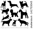 High quality vector silhouettes of dogs - stock photo