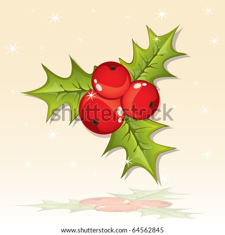 Holly berry, vector - stock vector