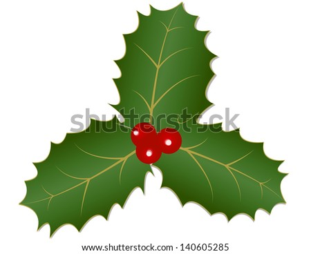 Holly Leaves and Berries - Three traditional holly leaves and red berries - stock vector