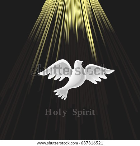 concepts of the holy spirit The holy ghost is mentioned by christ more than anyone else this takes us at  the difficult concept of the trinity the word trinity is not mentioned in the bible,.