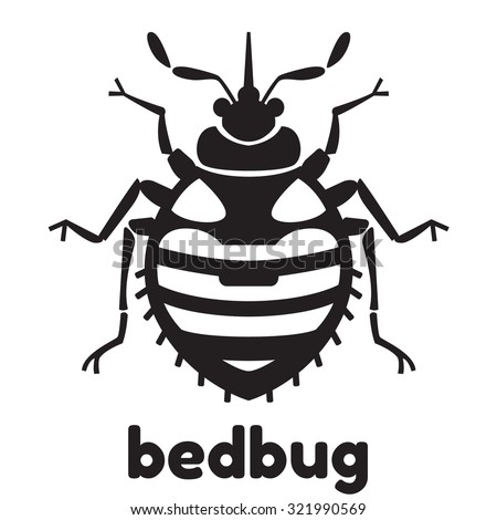Home bedbug vector illustration - set of household pests in pure style - stock vector