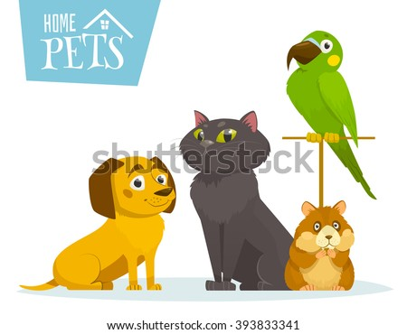 Home pets sitting in line, isolated on white, vector cartoon illustration, cat dog hamster bird parrot - stock vector