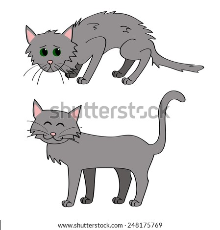homeless cat and adopted cat vector illustration - stock vector