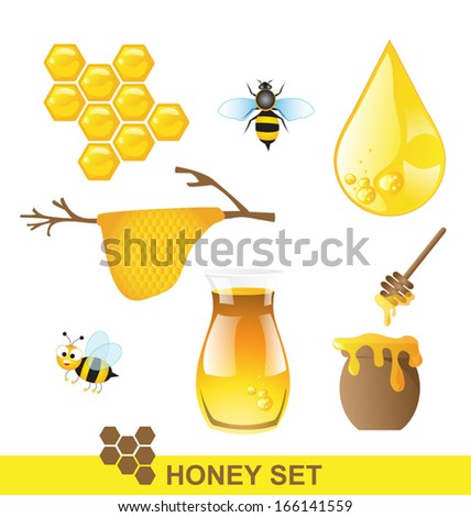 Honey and bee set Vector - stock vector