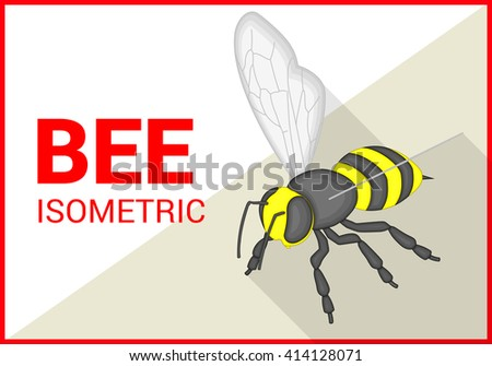 Honey bee insect isometric flat vector 3d illustration