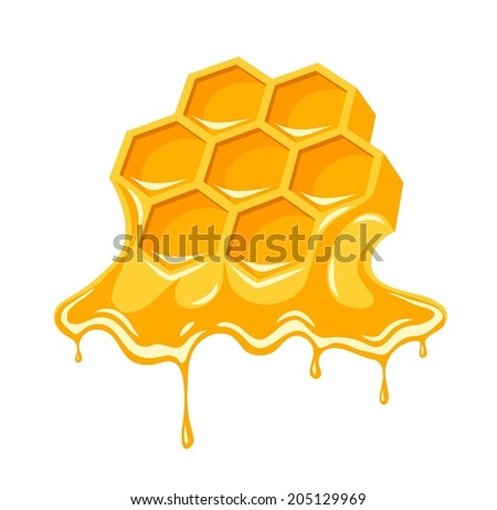 Honey flowing of bee honeycombs. Eps8 vector illustration. Isolated on white background - stock vector