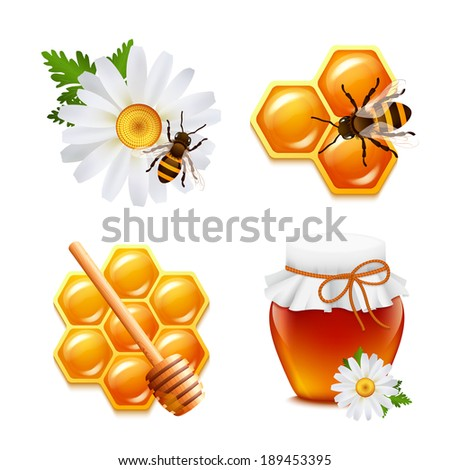 Honey food decorative icons set with daisy bumblebee honeycomb isolated vector illustration - stock vector
