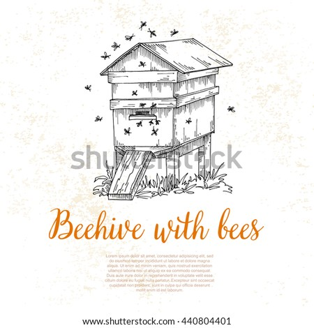 Honey From Beehive Wooden Hive Illustration In A Sketch Style Background On