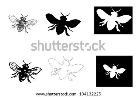 honeybee vintage - stock vector